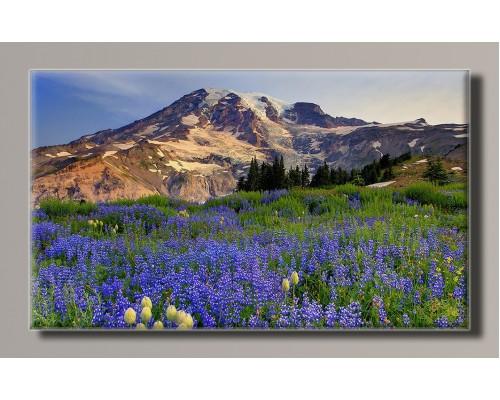 Картины на холсте Природа и пейзажи