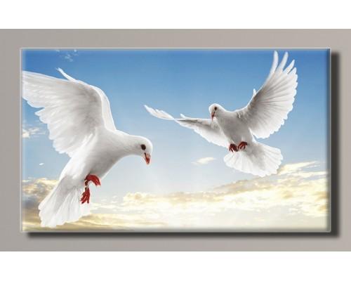Картины на холсте Животные и птицы