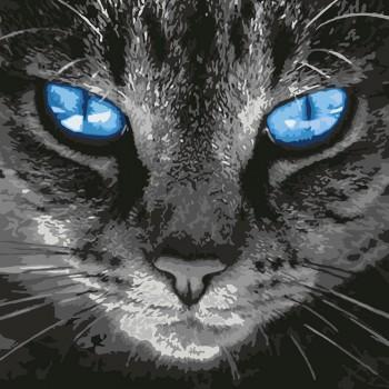 Картина по номерам Идейка Пронзительный взгляд 40*40 см (без коробки) арт.KHO4177