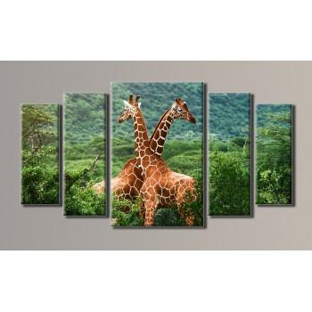 Картина модульная HolstArt Жирафы 2 54*101см 5 модулей арт.HAB-004