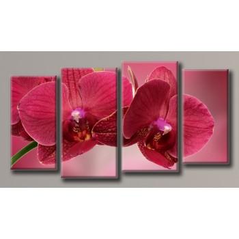 Картина модульная HolstArt Бордовая орхидея 58*108см 4 модуля арт.HAF-093