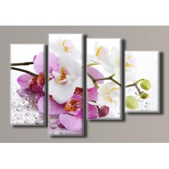 Картина модульная HolstArt Орхидея на стекле 70*102см 4 модуля арт.HAF-077