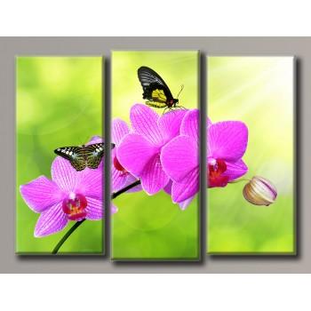 Картина модульная HolstArt Бабочки на орхидеи 90*120см 3 модуля арт.HAT-154
