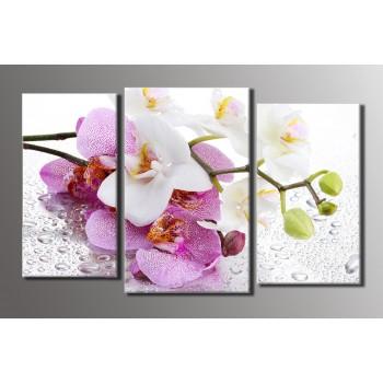 Картина модульная HolstArt Орхидея на стекле 54*89см 3 модуля арт.HAT-016