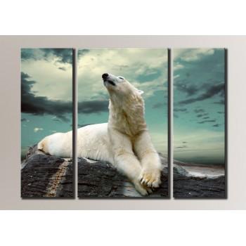 Картина модульная HolstArt Белый медведь 54*73,5см 3 модуля арт.HAT-009