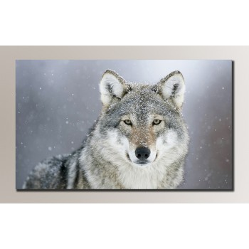 Картина (не раскраска) HolstArt Волк 54*32,5см арт.HAS-071