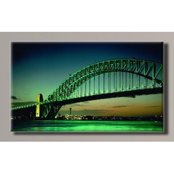 Картина HolstArt Sydney 55*32,5см арт.HAS-219