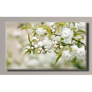 Картина (не раскраска) HolstArt Весна 55*32,5см арт.HAS-280