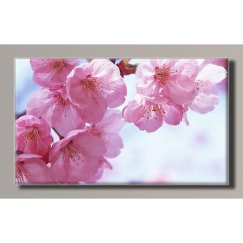 Картина (не раскраска) HolstArt Весна 55*32,5см арт.HAS-282