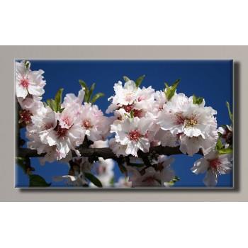 Картина (не раскраска) HolstArt Весна 55*32,5см арт.HAS-283