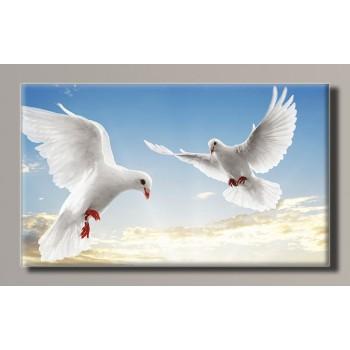 Картина (не раскраска) HolstArt Голуби 55*32,5см арт.HAS-375