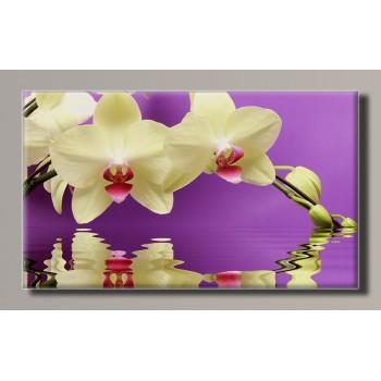 Картина HolstArt Белая орхидея 55*32,5см арт.HAS-378