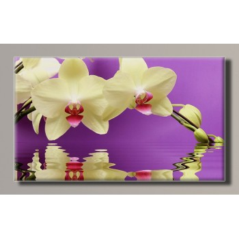 Картина (не раскраска) HolstArt Белая орхидея 55*32,5см арт.HAS-378