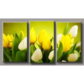 Картина модульная HolstArt Желтые тюльпаны 55*100см арт.HAT-192
