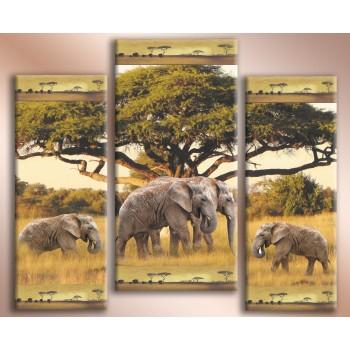 Картина модульная HolstArt Африканские слоны 2 70*84см 3 модуля арт.HAT-205