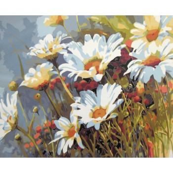 Картина по номерам Mariposa Ромашковое поле 40*50 см (в коробке) арт.MR-Q1439