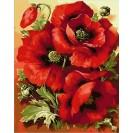 Картина по номерам Mariposa Великолепные маки 40*50 см (в коробке) арт.MR-Q1633