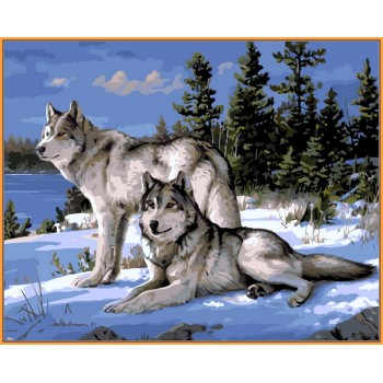 Картина по номерам Babylon Premium Волки на снегу 40*50 см (в коробке) арт.NB236R