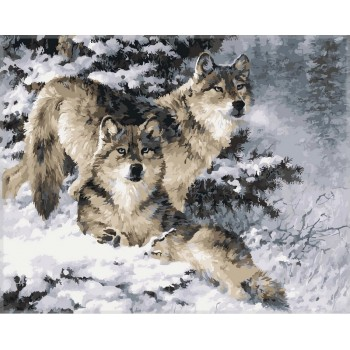 Картина по номерам Babylon Пара волков 40*50 см (в коробке) арт.VP344