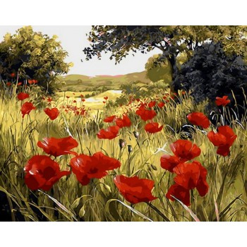 Картина по номерам Mariposa Маковая поляна 40*50 см (в коробке) арт.MR-Q1432
